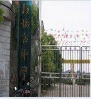 监利县桥初中初级中学过去作文怀念市镇图片