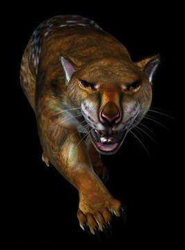 通过研究动物的头骨化石,科学家在已经灭绝的食肉哺乳动物中也得到了