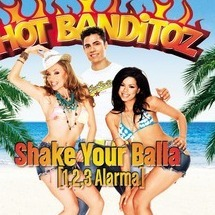 shake your balla(1,2,3 alarma)