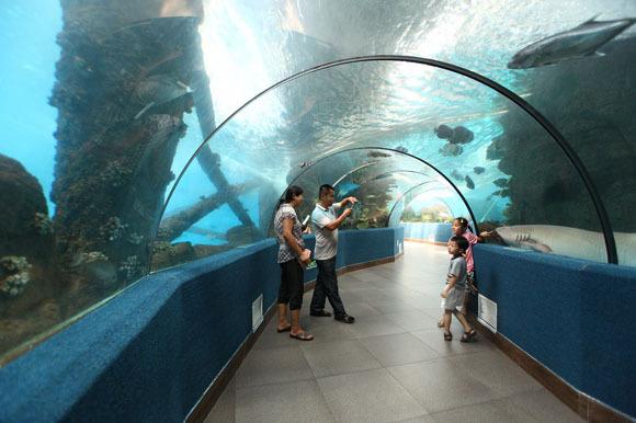 壁纸 海底 海底世界 海洋馆 水族馆 580_386