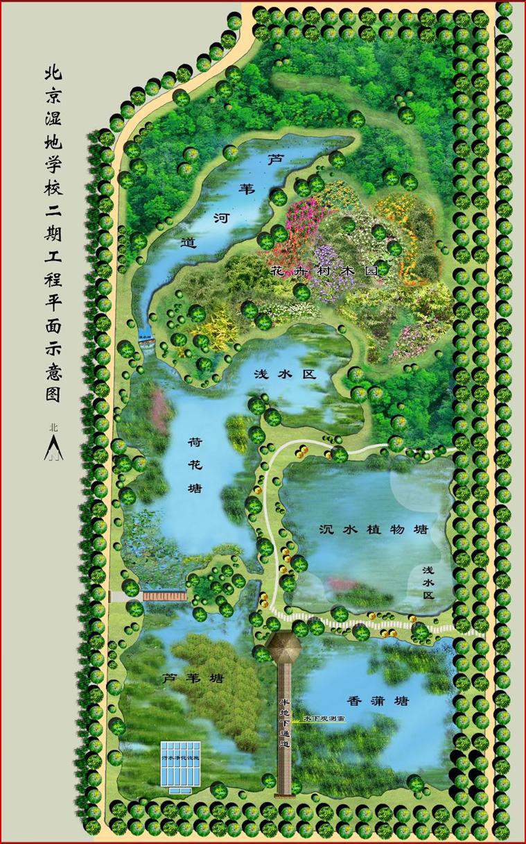 湿地景观手绘平面图