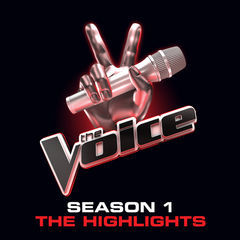 the voice:  season 1 highlights