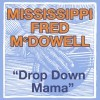 drop down mama (the blues roll on) (us release)