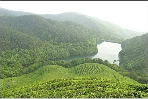 景区内山峦起伏,山谷纵横,溪水潺潺,地形变化丰富,形成不同的山地空间