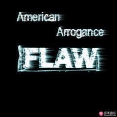 flaw(the paper album)