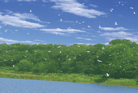 巢湖风景区